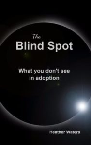 Cover The Blind Spot what  you don't see in adoption